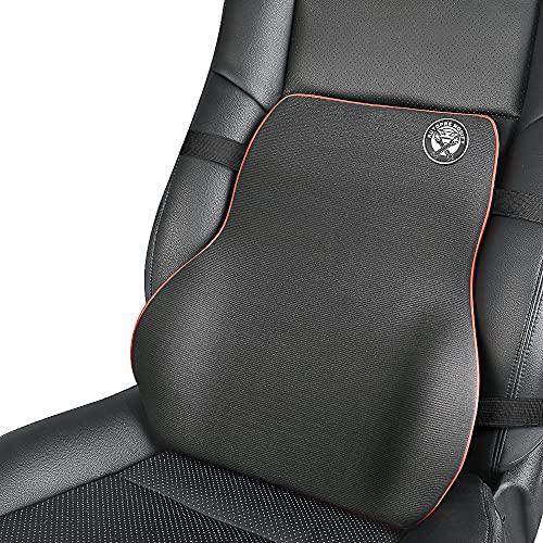 EASY EAGLE Cuscino Lombare per Auto, Ergonomica Supporto Lombare Cuscino Schiena per Auto Sedia Ufficio Divano Cuscini per Dolore alla Schiena
