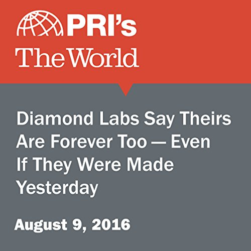 Diamond Labs Say Theirs Are Forever Too - Even If They Were Made Yesterday audiobook cover art