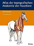 Atlas der topografischen Anatomie der Haustiere: Einbändige Ausgabe - P. Popesko