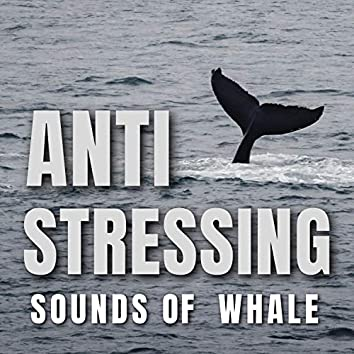 Anti Stressing Sounds of Whale