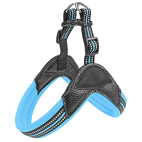 Fas Plus Dog Harness No Pull Easy Padded Pet Harness with 2 Adjustable Botton Back Clip Reflective Puppy Harnesses for Small Medium Large Dogs (Blue,L)