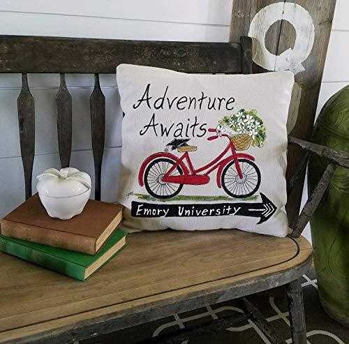 463Opher Afstudeer-gepersonaliseerde geschenken Vintager fietsmand vol van klaprozen rood geel blauwe bloemen Patio handgeschilderde kussensloop