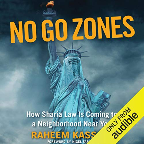 No Go Zones  By  cover art