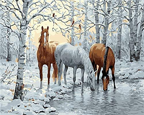 Pintura Digital Decoración del hogar Pintura Sala de Estar Animal Pintura al óleo Caballo 40X50cm Sin Marco