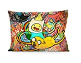"DoubleUSA Adventure Time Pillowcases Two Sides Print Zipper Pillow Covers 20""x30"""