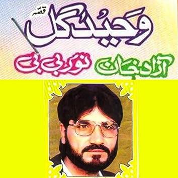 Azad Khan Noor Bibi