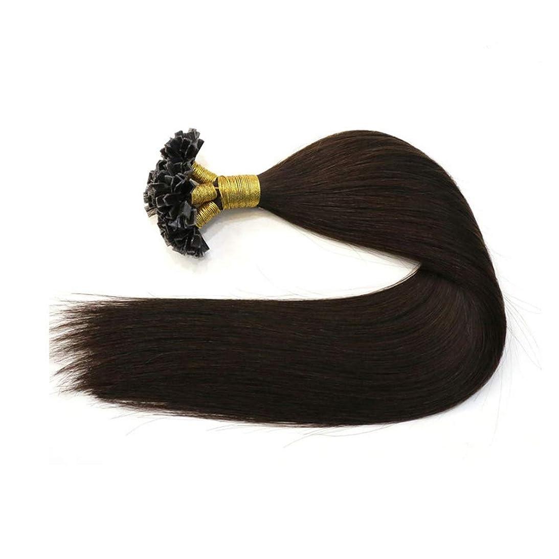 スタイルレシピ性交JULYTER ブラックナノチップフュージョン人間の髪の毛の拡張子レミーブラジルの髪の毛本能的なナノリング髪 (色 : 黒, サイズ : 22 inch)