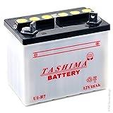 Greenstar 15375 Batterie u1 r7 (f503), Noir