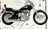 Suzuki LS650 Savage 1988 Aged Vintage Photo Poster Print A4