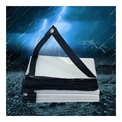 ZBM – ZBM Waterdicht, helder dakvilt voor planten, robuust, stofdicht, regendicht, winddicht, 2 m x 2 m, met oogjes, bungees, kogel, kabel voor kas, kooien, dak waterdicht 4x6M Transparant.