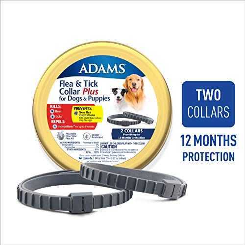 Adams Flea & Tick 2PK Collar for Large Dogs Grey One Size