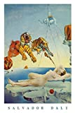 Salvador Dali Poster Dream Caused by A Bee Flight. (61cm x