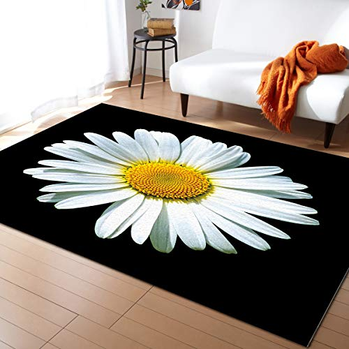 IDOWMAT White Daisy Super Soft Area Rug for Dining Room Home Decoration 5'x7' Luxury Warm Floor Carpet Nursery Mat for Baby Room, Living Room, Washable