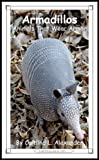 armadillos animals that wear armor