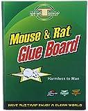 Maxtra Ratonera Humana,trampas de Pegamento para Ratas,tableros Adhesivos para trampas de Ratas,Pegamento para Ratones de jardín de Cocina Interior y Exterior 17x22cm,con Cebo