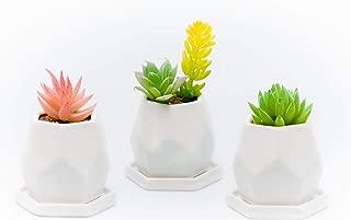 Succulent Planter Pots - Mini Ceramic Containers Flower Planter Pot Container, Cactus Planter, with Drainage Hole, Set of 3pc White Geometric.