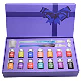 AIVN Glass Dip Pen Set - 19 Pieces of Calligraphy Pens Set. Includes 2 Glass Pens, 14 Bottle Inks, Pen Holder, Cleaning Cup and Introduction Booklet