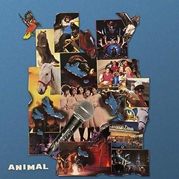 Animal (feat. Eve Calletti)
