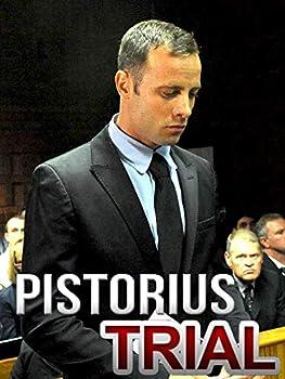 Pistorius Trial  The Key Questions