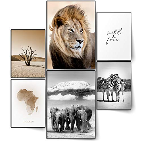 BLCKART Infinity Poster Set Afrika Stilvolle Doppelseitige Poster Safari Löwe Elefant Zebra Wohnzimmer Deko | 2X A3 | 4X A4 (Afrika, Ohne Rahmen)