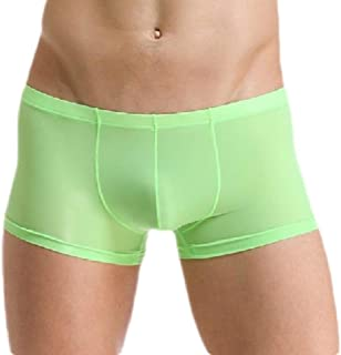 Men's Cozy Ice Silk U Convex Pouch Thin Boxer Briefs Underpants