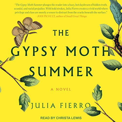 The Gypsy Moth Summer audiobook cover art