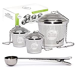 stainless steel tea infuser set