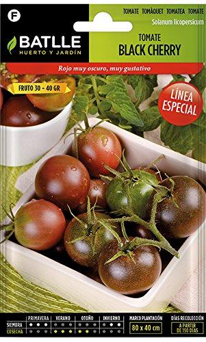 Semillas Batlle Línea Especial Tomatensamen Tomate Black Cherry