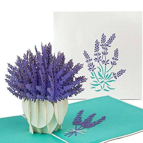"PaperCrush® Pop-Up Karte Blumen ""Lavendel"" - 3D Blumenkarte für Frau, Freundin oder Mutter (Geburtstagskarte, Runder Geburtstag, Muttertagskarte, Dankeschön) - Frühling Popup Karte mit Blumenmotiv"