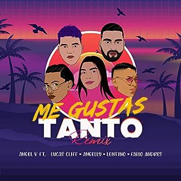 Me Gustas Tanto (Remix)