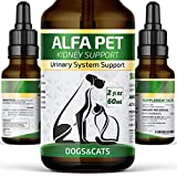 Best Feline Urinary Supports - Alfa Pet UTI Treatment for Cats and Dogs Review