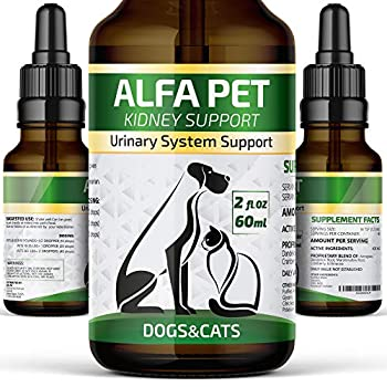 Alfa Pet Natural Kidney Support for Dog UTI & Cat UTI - Canine Urinary Tract Care w/Cranberry - Made in USA Dog Kidney Support - Cat Bladder Essentials  2 Oz