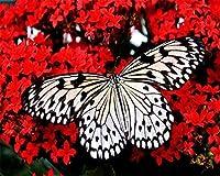 子供大人と初心者のデジタル油絵蝶と花のギフトセット事前に印刷されたキャンバスにDIY油絵40x50cmフレームレス