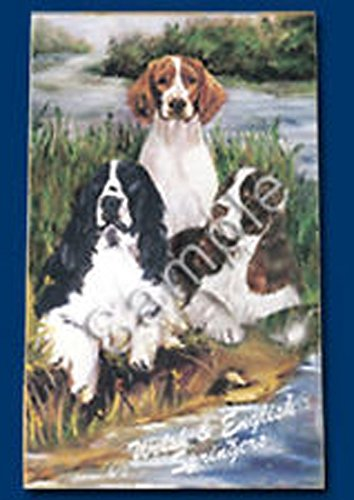 English and Welsh Springer Spaniel Dog Playing Cards Designed by Ruth Maystead (SPS-PC)