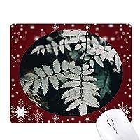 写真の葉の植物の性質 オフィス用雪ゴムマウスパッド
