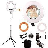 GSKAIWEN 12 INCH LED Ring Light Kit with Mirror,Tripod Stand Makeup Artist Light Dimmable 3200K/5500K Camera Studio Video Light Photography Lighting for Portrait Selfie YouTube Vlogging Salon Shooting