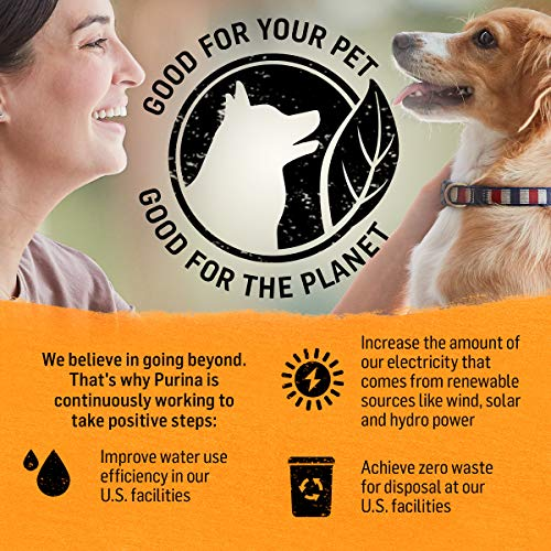 Purina Beyond Limited Ingredient Natural Dry Dog Food