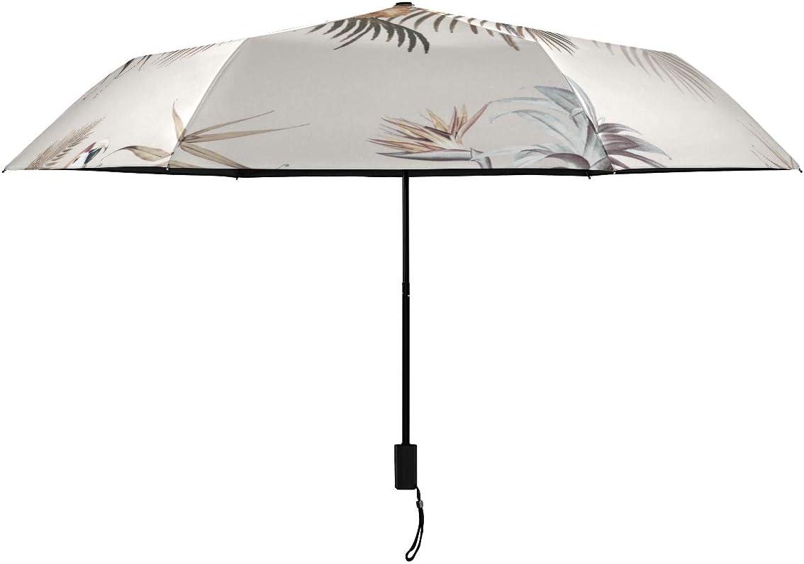 Macaw Tropical Selling Plant Parasol Compact Rain Now free shipping RainWind Nan Umbrella