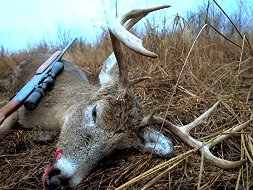 Best Public Hunting Land Wisconsin