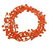maDDma 3m Bommelborte, 20mm breit Pomponborte Bommelband Pompon Band, Farbwahl, Farbe:orange