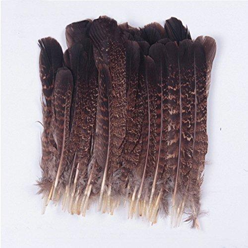 Sopeace Paquete de 12 plumas de águila, tacto de naturaleza águila, 15,2 - 20,3 cm SOP56