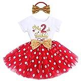 Recién nacido bebé 1/2/3 cumpleaños niña Minnie vestido manga corta algodón Body Tul Princesa Fiesta Cake Smash Baby Set Photo Shooting cumpleaños ropa de noche ropa de ropa de noche Rojo-2nd 2 Años