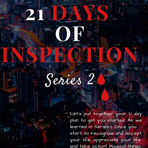 21 Days of Inspection: A New Light audiobook cover art