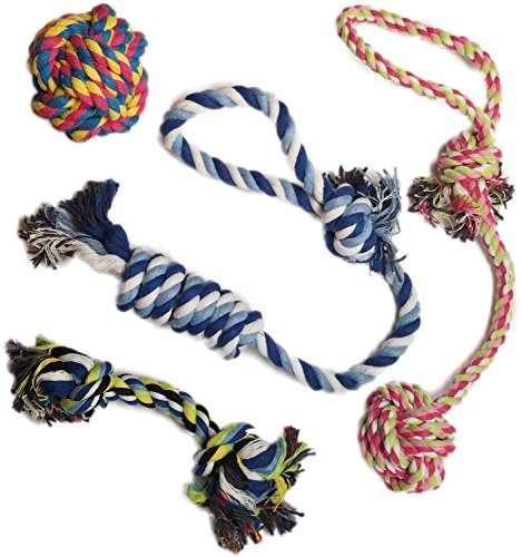 Otterly Pets Hundespielzeug für kleine bis mittelgroße Hunde, 4 Stück
