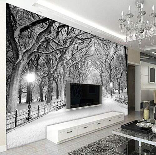 3D vliesbehang plantenvezel zwart en wit sneeuwlandschap fotobehang 3D stereo woonkamer slaapkamer achtergrond muur wooncultuur 350*245 350 x 245 cm.