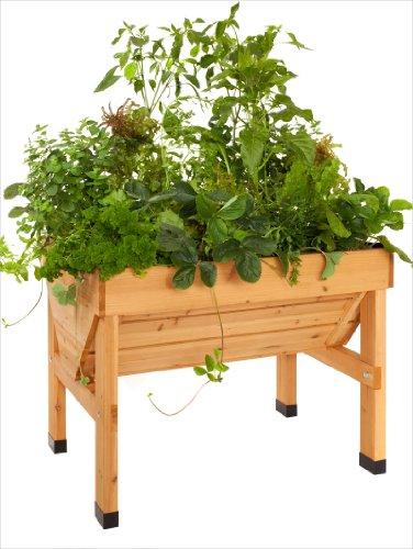 VegTrug Pflanztrog aus Holz, 1 m breit - kleine Ausführung