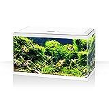 Acquario ambiente aqua 60 LED bianco