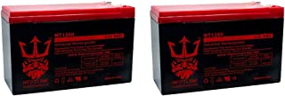 Verizon FiOS Replacement Battery GT12080-HG PX12072-HG by Neptune (2) Pack
