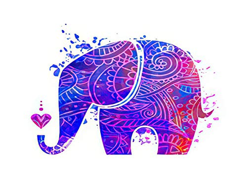 Y·JIANG Pintura por números, acuarela mandala, felicitación, hermoso elefante de animal, mapa, lienzo acrílico, pintura al óleo por números, para adultos, niños, decoración de la pared, 40,6 x 40,6 cm