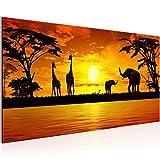Wandbilder Afrika Sonnenuntergang 1 Teilig Modern Vlies